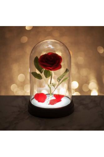 Lampka Zaczarowana Róża Piękna i Bestia